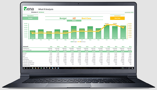 Reporting and Analytics: Vena CPM Solutions